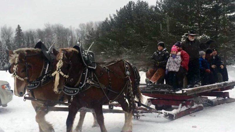 Neebish-sleigh-ride-800x450