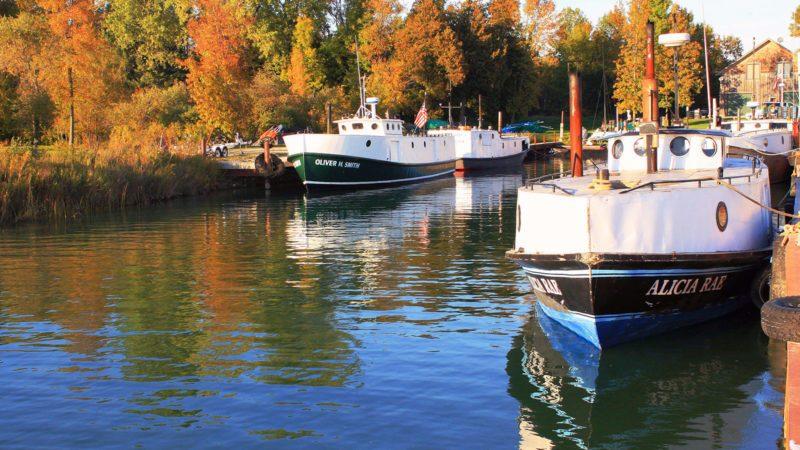 Fishing-Boats_TrygvieJensen-800x450